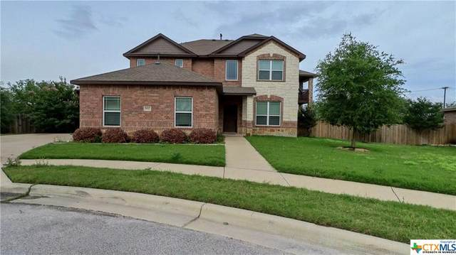 8517 Rimini Cove, Round Rock, TX 78665 (MLS #440221) :: Kopecky Group at RE/MAX Land & Homes
