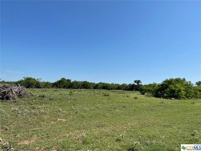 TBD 00 Cr 405, Floresville, TX 78114 (MLS #440276) :: The Zaplac Group