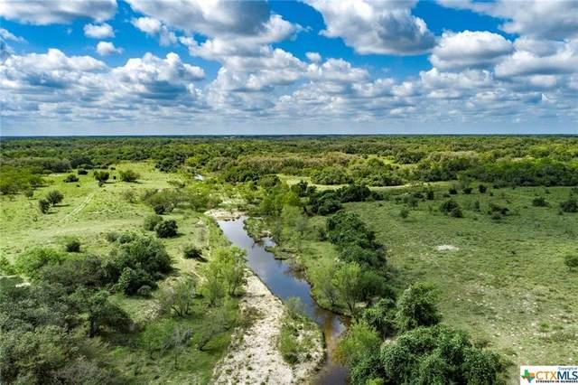 000 Hwy 183, Goliad, TX 77963 (#440327) :: First Texas Brokerage Company