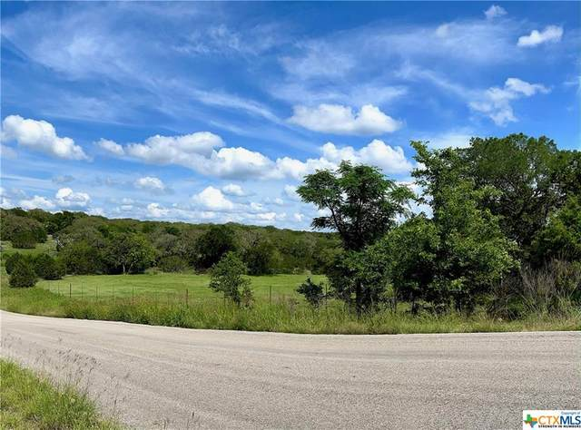 401 W Branch Crossing, Spring Branch, TX 78070 (MLS #440695) :: Kopecky Group at RE/MAX Land & Homes