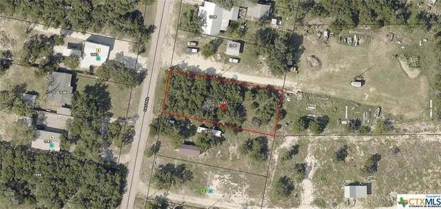 1357 Cattail, Canyon Lake, TX 78133 (MLS #440796) :: Kopecky Group at RE/MAX Land & Homes