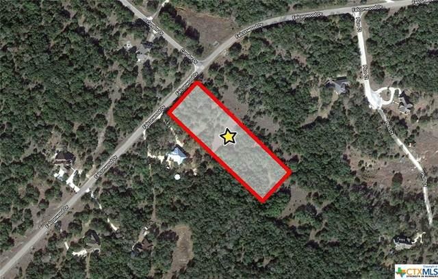 578 Falconwood Drive, San Marcos, TX 78666 (MLS #441044) :: Kopecky Group at RE/MAX Land & Homes