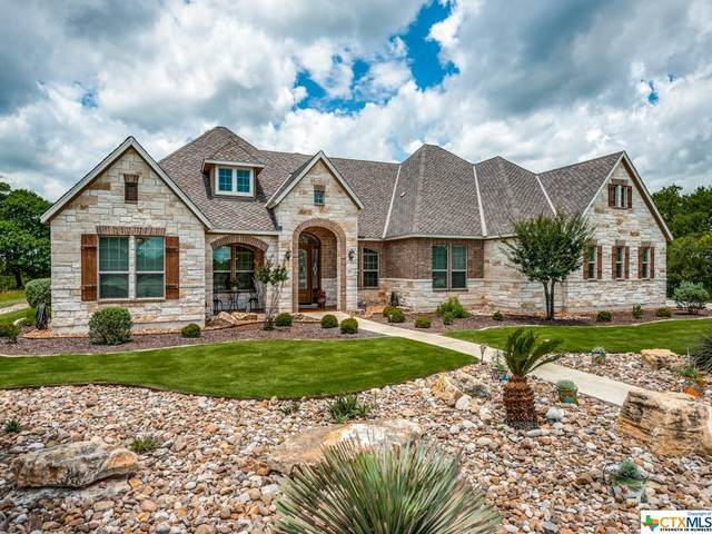 157 Hill Myna Lane, Spring Branch, TX 78070 (MLS #441062) :: The Zaplac Group