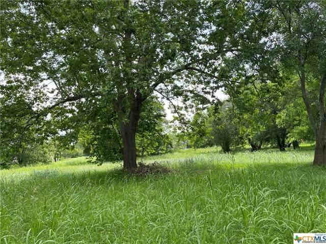 181 Rio Grande Drive, Seguin, TX 78155 (MLS #441078) :: Kopecky Group at RE/MAX Land & Homes