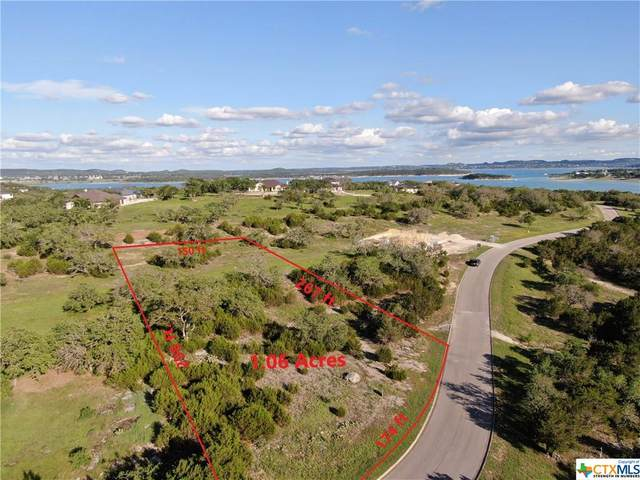 2464 George Pass, Canyon Lake, TX 78133 (MLS #441124) :: The Zaplac Group