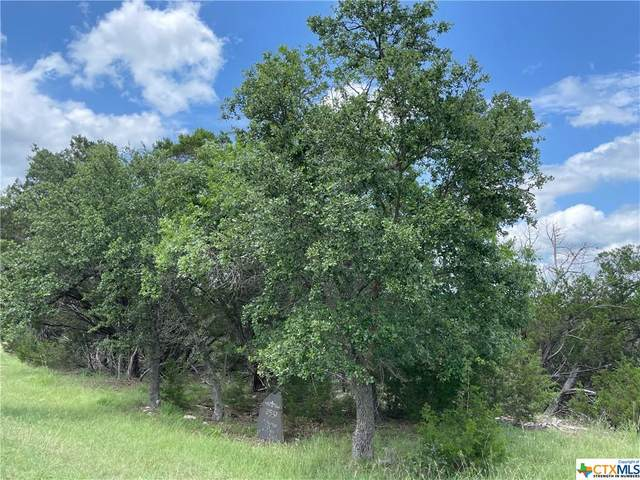 2531 George Pass #1, Canyon Lake, TX 78133 (MLS #441632) :: The Zaplac Group
