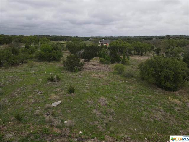 186 Spicewood Trail Drive, Spicewood, TX 78669 (MLS #441694) :: Kopecky Group at RE/MAX Land & Homes