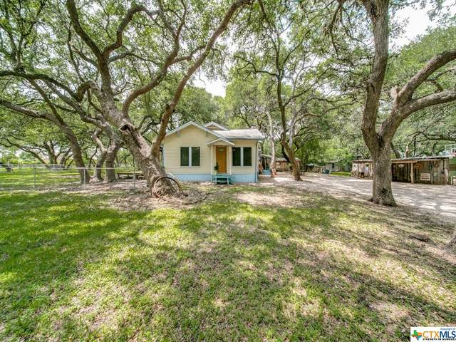 3335 Green Valley Road, Cibolo, TX 78108 (MLS #441747) :: Rutherford Realty Group
