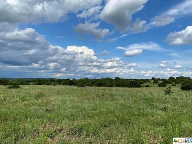 Lot 84 Three Creeks Drive, OTHER, TX 78605 (MLS #441889) :: Rebecca Williams