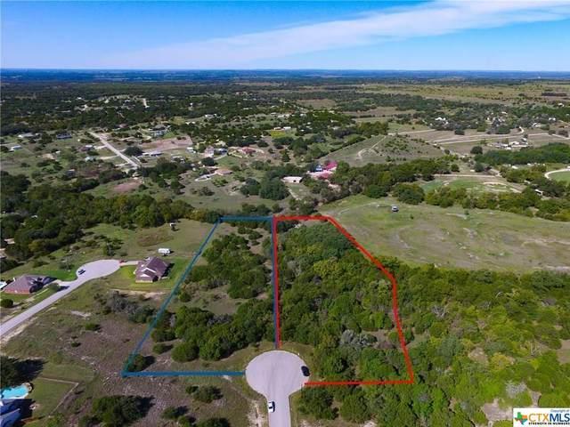 191 County Road 3373, Kempner, TX 76539 (MLS #441978) :: Rebecca Williams