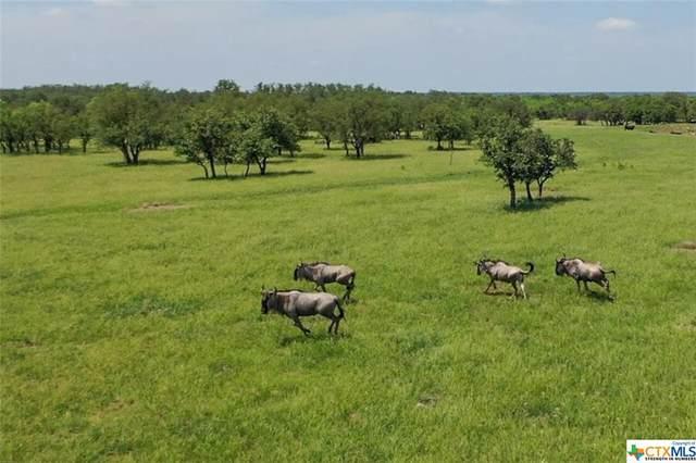 9131 Cr 3477, Melvin, TX 76858 (MLS #442001) :: Texas Real Estate Advisors