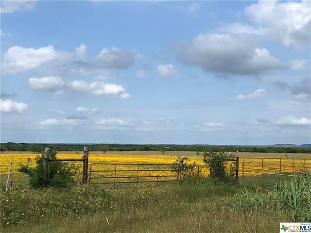 8095 County Road 137, Gatesville, TX 76528 (MLS #442002) :: Brautigan Realty