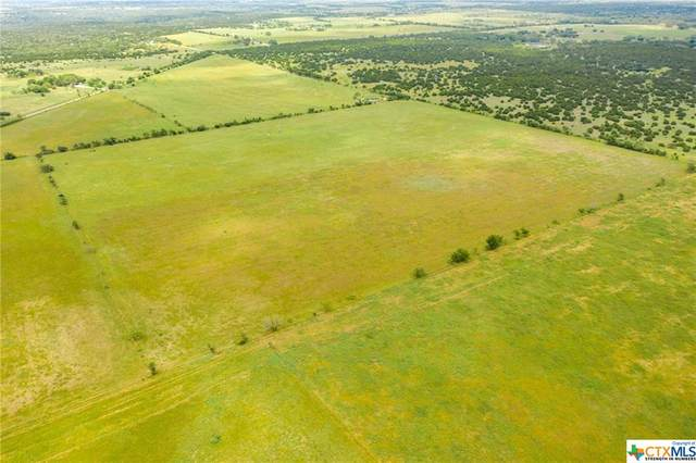 TBD Tract 2 County Rd 137, Gatesville, TX 76528 (MLS #442018) :: Texas Real Estate Advisors