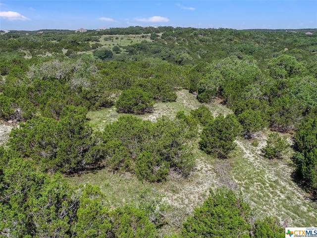 1047 Mystic Breeze, Spring Branch, TX 78070 (MLS #442052) :: Rutherford Realty Group