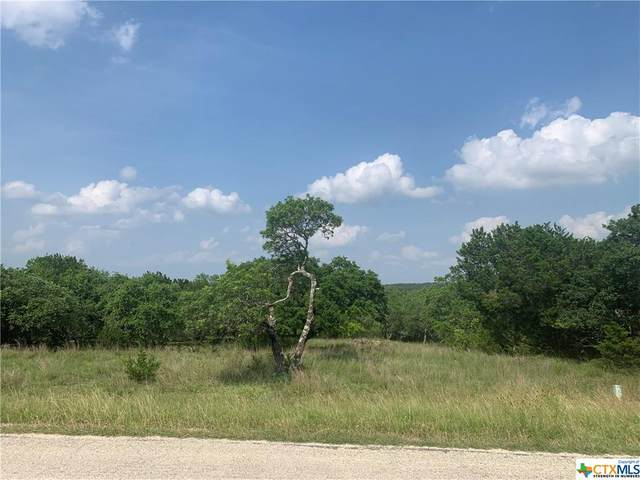 2203 River Way, Spring Branch, TX 78070 (MLS #442106) :: The Zaplac Group
