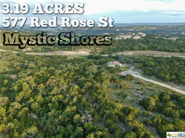 577 Red Rose Street, Spring Branch, TX 78070 (MLS #442209) :: Kopecky Group at RE/MAX Land & Homes