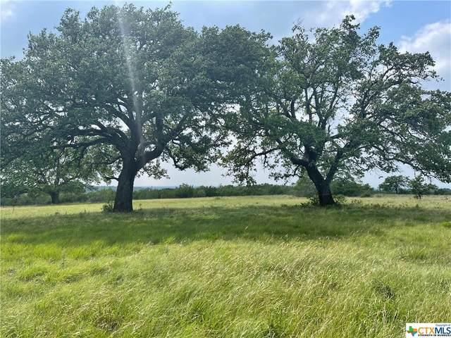 18 Vista Ridge Drive, Round Mountain, TX 78663 (MLS #442285) :: Texas Real Estate Advisors