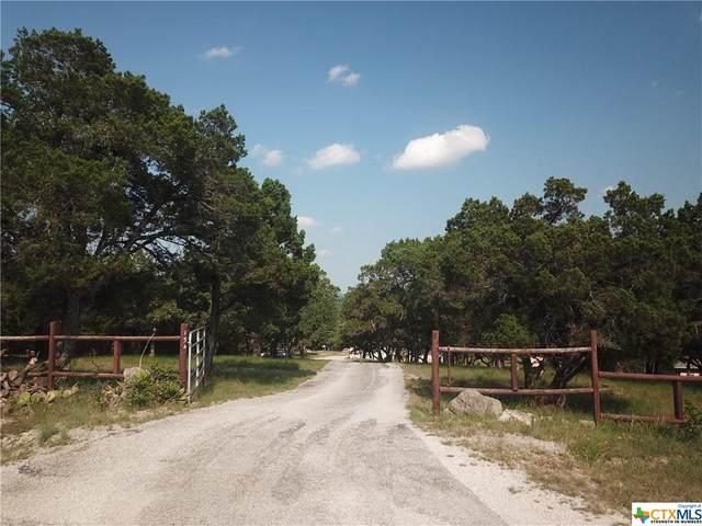 154 Draft Horse Ln, Fischer, TX 78623 (MLS #442355) :: The Real Estate Home Team