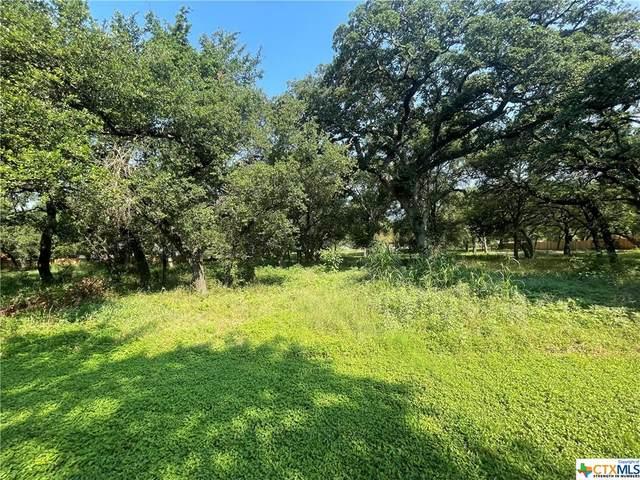 110 Lago Viento Lane, Temple, TX 76503 (MLS #442421) :: RE/MAX Family