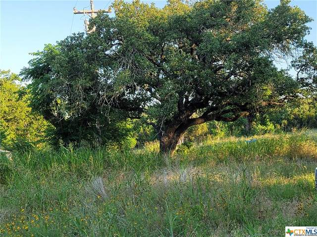 501 Sierra Vista Drive, OTHER, TX 76528 (MLS #442651) :: Rebecca Williams