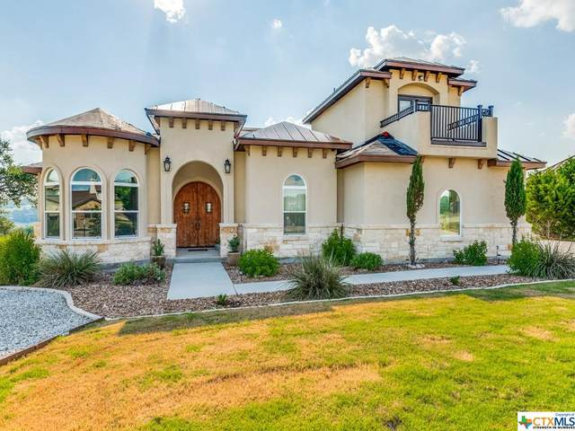 410 Muse Drive, Spring Branch, TX 78070 (MLS #442666) :: Kopecky Group at RE/MAX Land & Homes