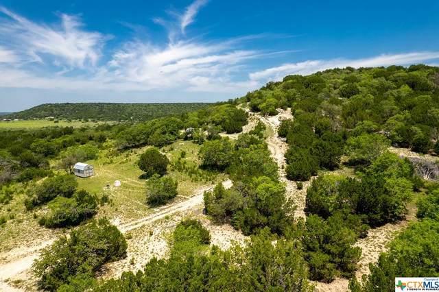 1493 County Road 3940, Evant, TX 76525 (#442752) :: First Texas Brokerage Company