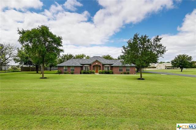 3845 Doris Lane, Round Rock, TX 78664 (MLS #442755) :: Brautigan Realty
