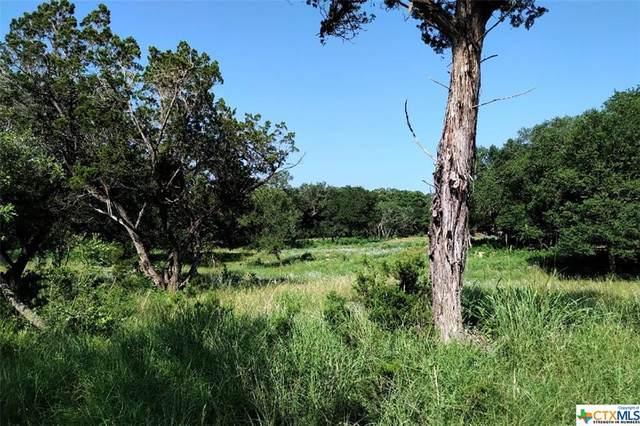 6922 Circle Oak Drive, Bulverde, TX 78163 (MLS #442830) :: The Zaplac Group
