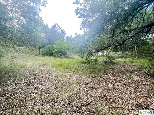 3601 Quail Hollow Road, Harker Heights, TX 76548 (MLS #442916) :: Brautigan Realty
