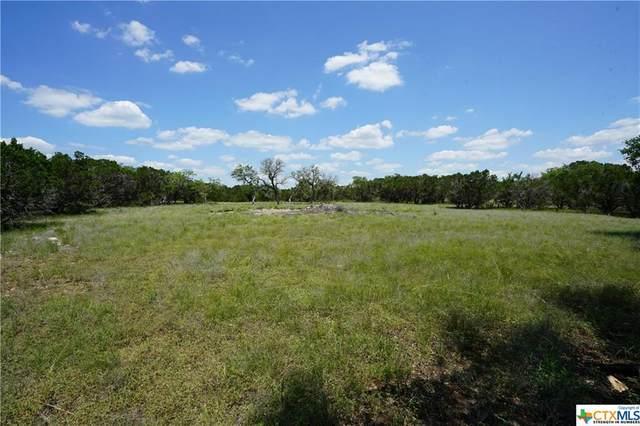 982 Malbec Loop, Canyon Lake, TX 78133 (MLS #443011) :: The Real Estate Home Team