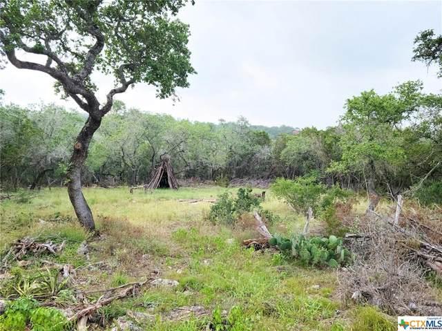 901 Thurman Road, San Marcos, TX 78666 (MLS #443152) :: Kopecky Group at RE/MAX Land & Homes
