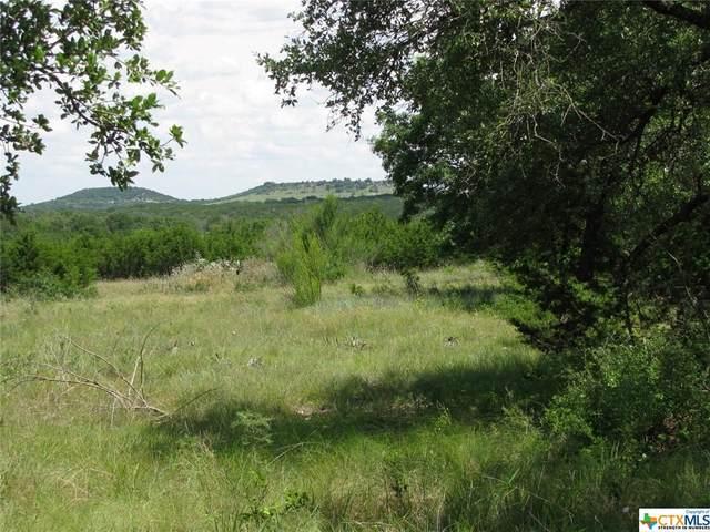 TBD-29 Blakely Road, Gatesville, TX 76528 (MLS #443369) :: Brautigan Realty