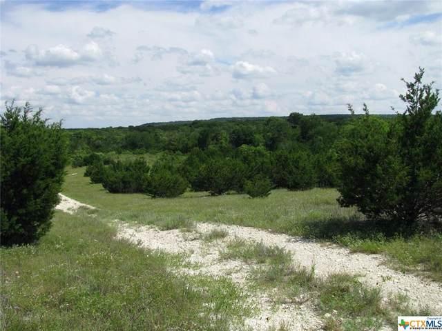TBD-36 Blakely Road, Gatesville, TX 76528 (MLS #443371) :: Brautigan Realty