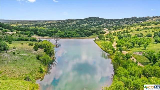 647 Crabapple Road, Blanco, TX 78606 (MLS #443379) :: The Myles Group