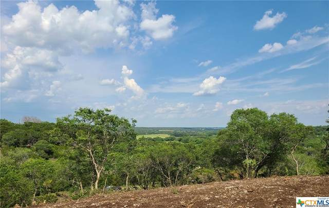 TBD 2 Winter Road, Gatesville, TX 76528 (MLS #443480) :: The Zaplac Group