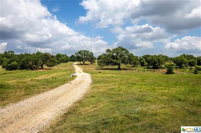 10120 W State Highway 46, New Braunfels, TX 78132 (#443567) :: Realty Executives - Town & Country