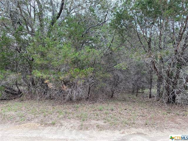 17 Afterglow Circle, Wimberley, TX 78676 (MLS #443663) :: Rutherford Realty Group