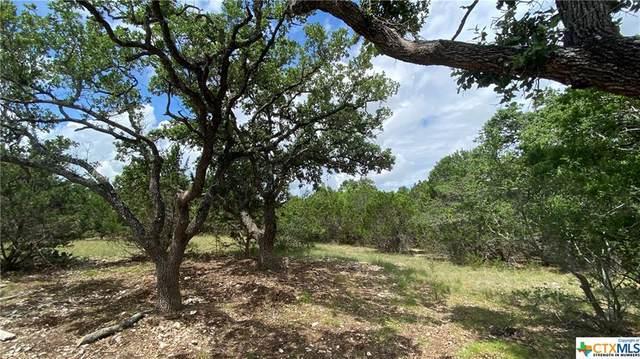 585 Rock Trail Place, Spring Branch, TX 78070 (MLS #443666) :: Rebecca Williams