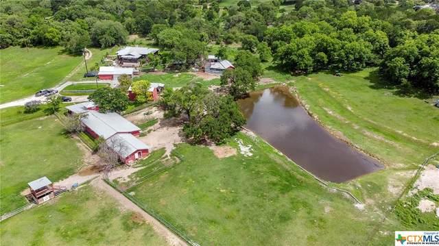 10321 Rebecca Creek Road, Spring Branch, TX 78070 (MLS #443703) :: The Myles Group