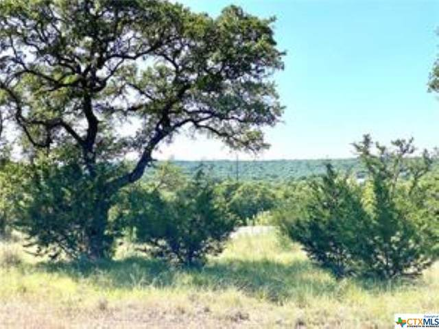 Lot 18 Angelica Vista, Canyon Lake, TX 78133 (MLS #443748) :: Rutherford Realty Group