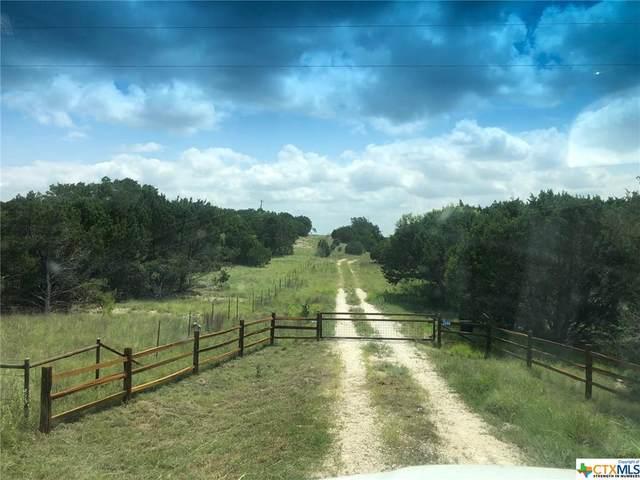 2244 N Us Hwy 281 Highway, Lampasas, TX 76550 (MLS #443870) :: RE/MAX Family