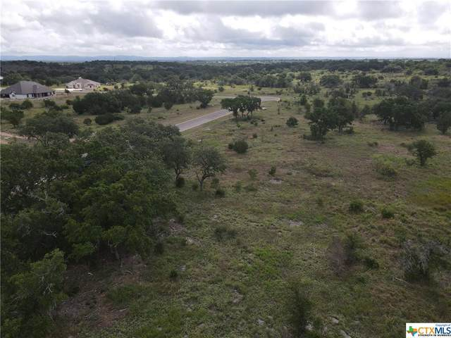 229 Spicewood Trail Drive, Spicewood, TX 78669 (MLS #443931) :: The Real Estate Home Team