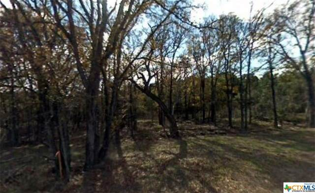0 Mandelane Drive, Selma, TX 78154 (MLS #444071) :: Texas Real Estate Advisors