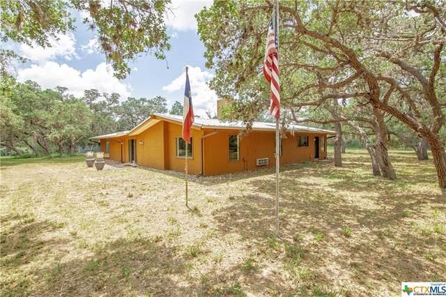 891 Loop 105, Cuero, TX 77954 (MLS #444657) :: Brautigan Realty