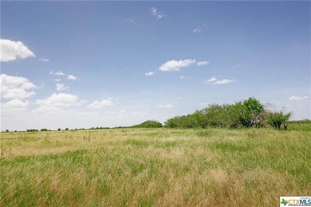 000 Hwy 2043, Goliad, TX 77963 (MLS #444749) :: RE/MAX Land & Homes