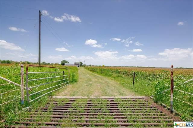 4414 & 000 Hwy 2043, Goliad, TX 77963 (MLS #444751) :: Kopecky Group at RE/MAX Land & Homes