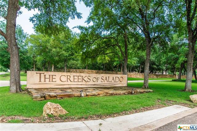 3029 Rolling Meadow Drive, Salado, TX 76571 (MLS #444912) :: The Zaplac Group