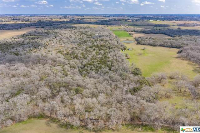 3439 Seidel Road, Schulenburg, TX 78956 (MLS #445605) :: Rutherford Realty Group