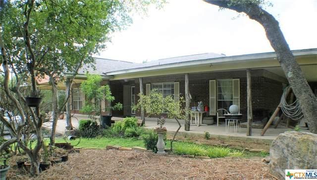 3500 Puter Creek, Spring Branch, TX 78070 (MLS #445708) :: Kopecky Group at RE/MAX Land & Homes