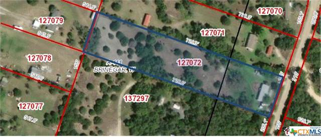 2917 Willow Loop, Kempner, TX 76539 (MLS #445748) :: Rutherford Realty Group
